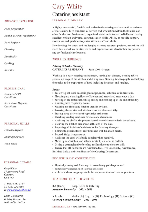 download netherlands cv template for free