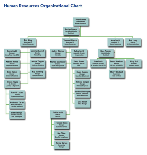 Human Resources Organizational Chart 5
