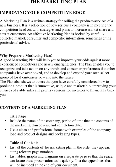 New Product Marketing Plan Template0A