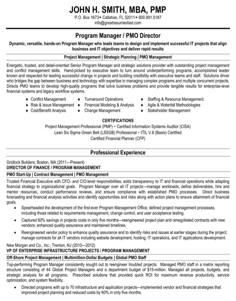 Program Manager-PMO Director-Resume