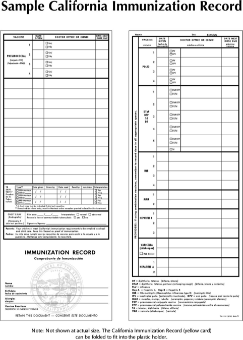 photograph relating to California Immunization Card Printable named Down load Immunization History for Totally free - FormTemplate