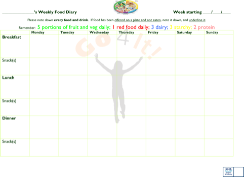 Weekly Food Diary Template Microsoft Word