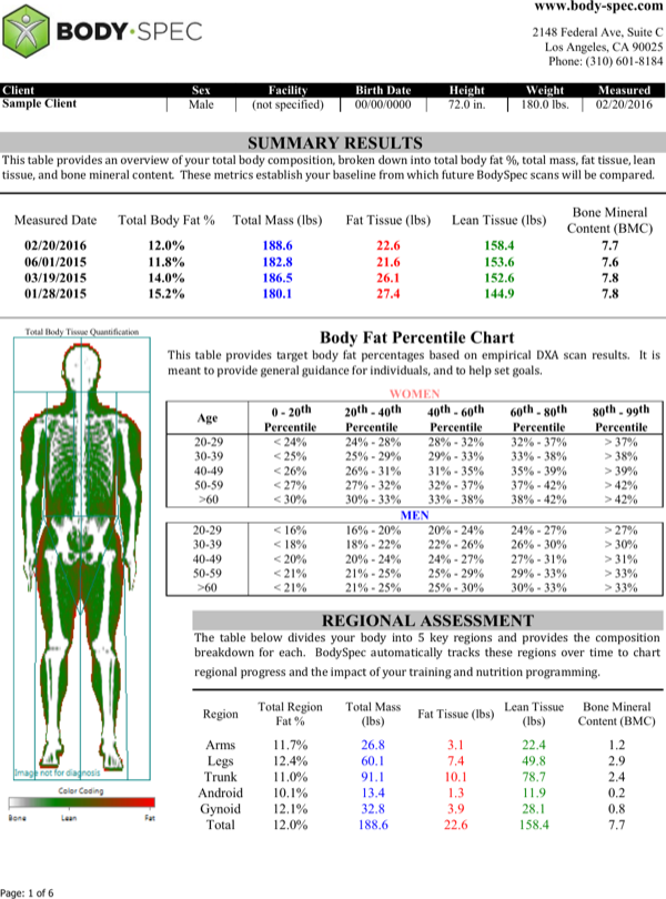 Body fat percentage chart template